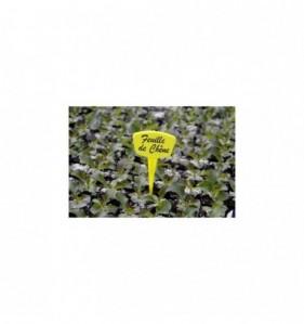 10 Etiquettes A Planter 15cm