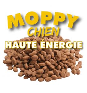 Moppy Moppy Haute Énergie