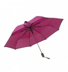 Parapluie Dinan