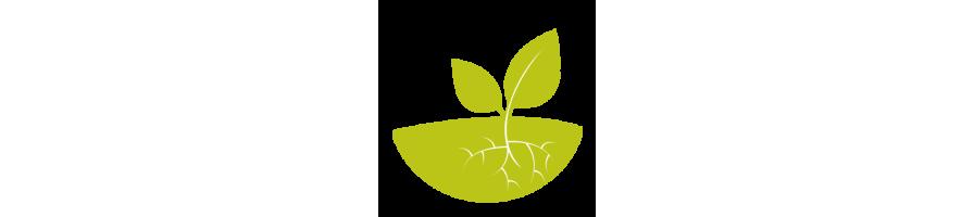 Nos produits : Jardin