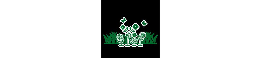 Nos produits : Gazons et engrais verts