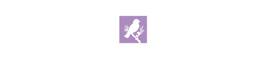 Nos produits : Oiseaux